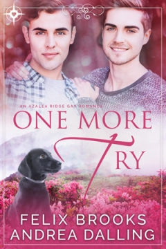 One More Try book cover